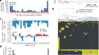 Genetic and transcriptional evolution alters cancer cell line drug response