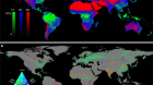 Global land change from 1982 to 2016