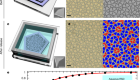A Brownian quasi-crystal of pre-assembled colloidal Penrose tiles