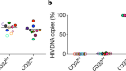 Conflicting evidence for HIV enrichment in CD32+ CD4 T cells