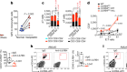 LILRB4 signalling in leukaemia cells mediates T cell suppression and tumour infiltration