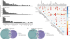 Functional genomic landscape of acute myeloid leukaemia