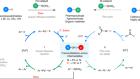 Base-free nickel-catalysed decarbonylative Suzuki–Miyaura coupling of acid fluorides