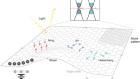 Magnetism in two-dimensional van der Waals materials