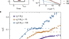 Universal prethermal dynamics of Bose gases quenched to unitarity
