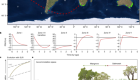 Wetland carbon storage controlled by millennial-scale variation in relative sea-level rise