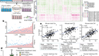 An integrative systems genetic analysis of mammalian lipid metabolism
