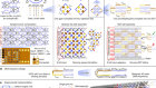 Diverse and robust molecular algorithms using reprogrammable DNA self-assembly
