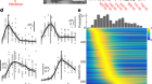 Feature-selective encoding of substrate vibrations in the forelimb somatosensory cortex
