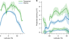 Greater vulnerability to warming of marine versus terrestrial ectotherms