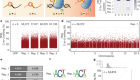 Transcriptome-wide off-target RNA editing induced by CRISPR-guided DNA base editors