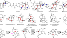 Quaternary-centre-guided synthesis of complex polycyclic terpenes
