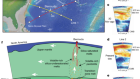 Sampling the volatile-rich transition zone beneath Bermuda