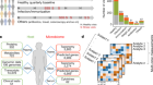 Longitudinal multi-omics of host–microbe dynamics in prediabetes