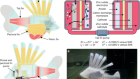 Electrolytic vascular systems for energy-dense robots