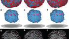 Observing crystal nucleation in four dimensions using atomic electron tomography