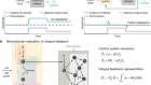 A universal biomolecular integral feedback controller for robust perfect adaptation