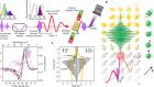 Light-wave dynamic control of magnetism
