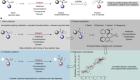 Holistic prediction of enantioselectivity in asymmetric catalysis