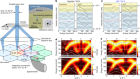 Position and momentum mapping of vibrations in graphene nanostructures