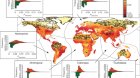 Wilderness areas halve the extinction risk of terrestrial biodiversity