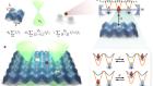 Analogue quantum chemistry simulation