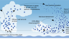 A large source of cloud condensation nuclei from new particle formation in the tropics
