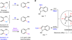 Metal-free directed sp2-C–H borylation