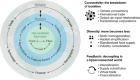 Anatomy and resilience of the global production ecosystem