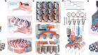 Voxelated soft matter via multimaterial multinozzle 3D printing