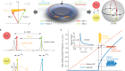 Observation of the exceptional-point-enhanced Sagnac effect
