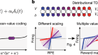 A distributional code for value in dopamine-based reinforcement learning