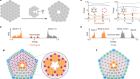 Bulk–disclination correspondence in topological crystalline insulators