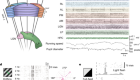 Survey of spiking in the mouse visual system reveals functional hierarchy