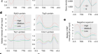 Negative supercoil at gene boundaries modulates gene topology