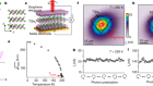 Spontaneous gyrotropic electronic order in a transition-metal dichalcogenide
