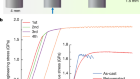 Strain-hardening and suppression of shear-banding in rejuvenated bulk metallic glass