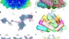 Structural basis of energy transfer in Porphyridium purpureum phycobilisome