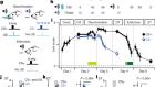 Dopamine D2 receptors in discrimination learning and spine enlargement
