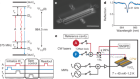 Control and single-shot readout of an ion embedded in a nanophotonic cavity