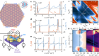 Tunable correlated states and spin-polarized phases in twisted bilayer–bilayer graphene