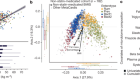 Statin therapy is associated with lower prevalence of gut microbiota dysbiosis