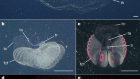 Revealing enigmatic mucus structures in the deep sea using DeepPIV
