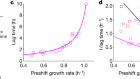 A universal trade-off between growth and lag in fluctuating environments