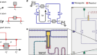 Waveguide quantum electrodynamics with superconducting artificial giant atoms