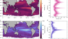 Thermal displacement by marine heatwaves
