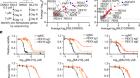 Plasticity of ether lipids promotes ferroptosis susceptibility and evasion