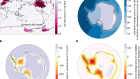 Antarctic ice dynamics amplified by Northern Hemisphere sea-level forcing