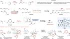 Catalytic asymmetric addition of an amine N–H bond across internal alkenes