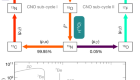Experimental evidence of neutrinos produced in the CNO fusion cycle in the Sun
